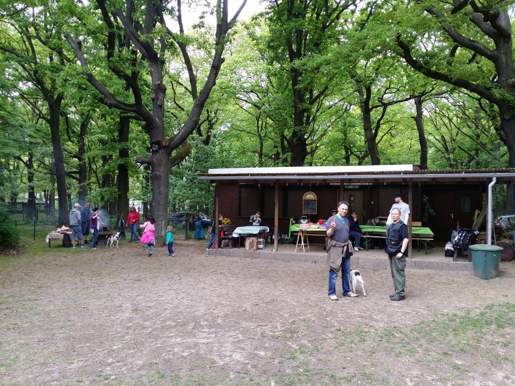 2015.05.10_hundetraining_05.jpg