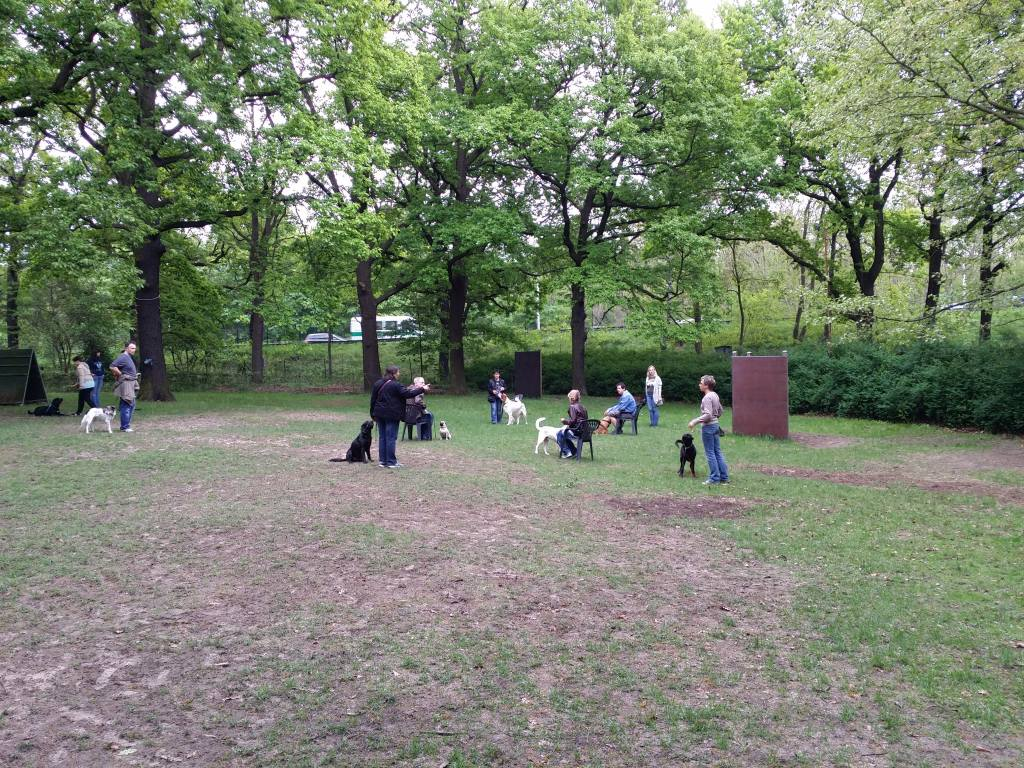 2015.05.10_hundetraining_07.jpg
