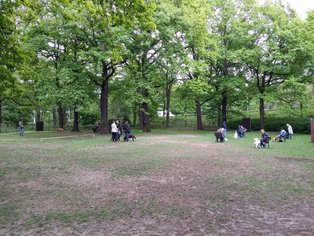 2015.05.10_hundetraining_10.jpg