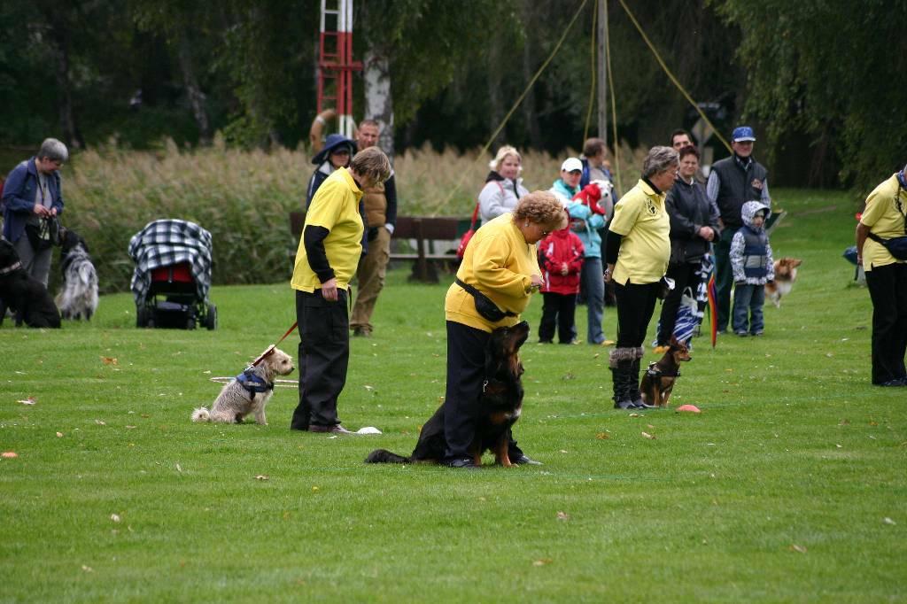 2012-09-22_hunderennen_mahlow_105