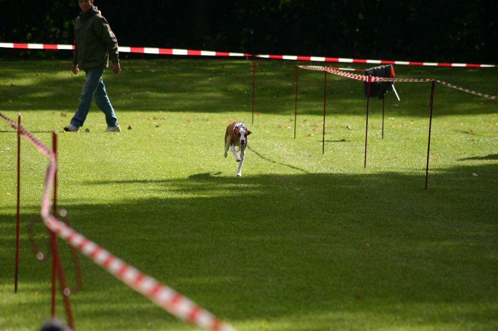 2012-09-22_hunderennen_mahlow_247