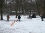 02.02.2014 Hundetraining