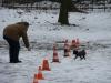 2014-02-02_hundetraining_12