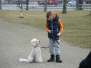 02.03.2014 Hundetraining