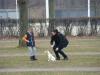 2014-03-02_hundetraining_024