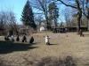 2013-04-07_hundetraining_44