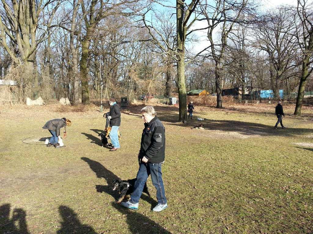 2014-02-09_hundetraining_095