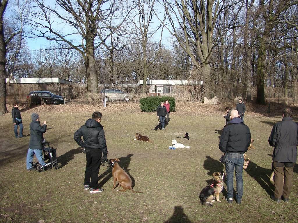 2014-02-09_hundetraining_134