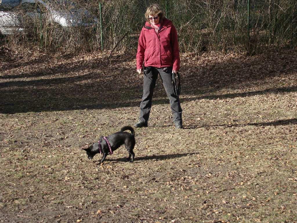 2014-02-09_hundetraining_180