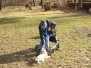 09.02.2014 Hundetraining