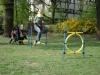 2014.04.13_hundetraining_070