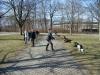 2013-04-14_hundetraining_33