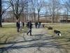 2013-04-14_hundetraining_34