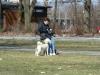2013-04-14_hundetraining_56