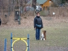 2014-02-16_hundetraining_017