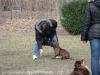 2014-02-16_hundetraining_100