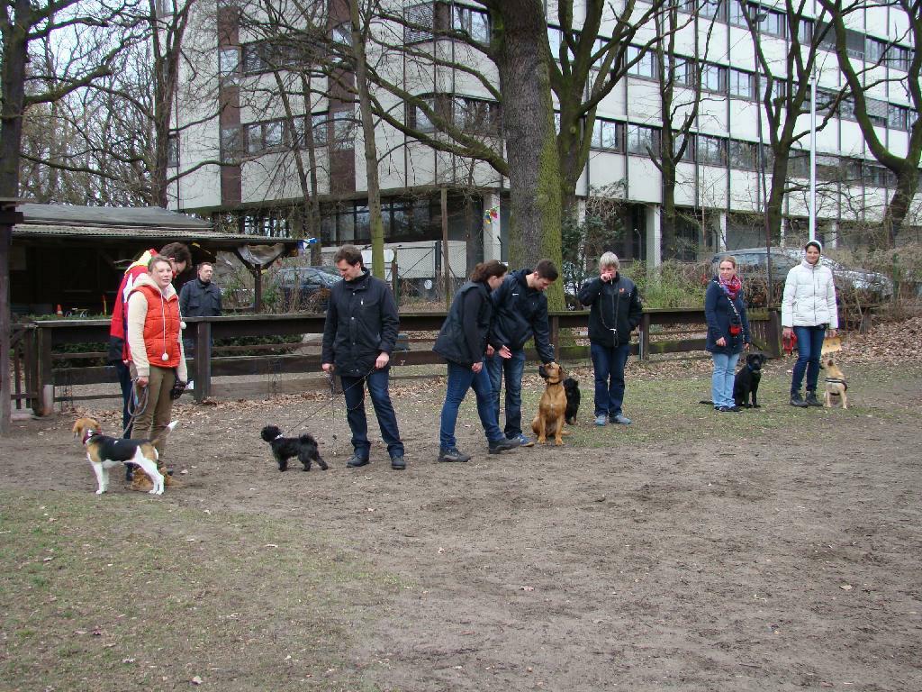 2014.03.16_hundetraining_55