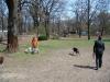 2013-04-21_hundetraining_20