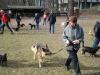 2014-02-23_hundetraining_052