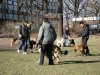 2014-02-23_hundetraining_105