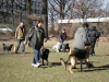 2014-02-23_hundetraining_106
