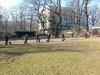 2014-02-23_hundetraining_183