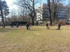 2014-02-23_hundetraining_185