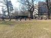 2014-02-23_hundetraining_190