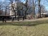 2014-02-23_hundetraining_213