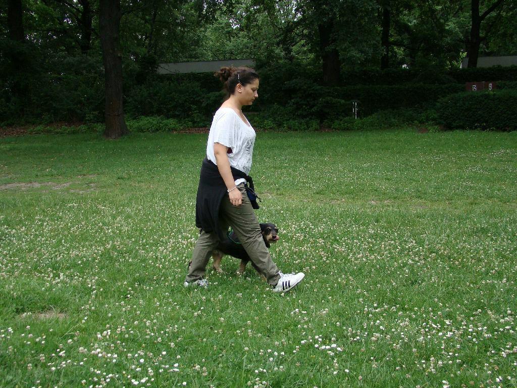 2013-06-23_hundetraining_28