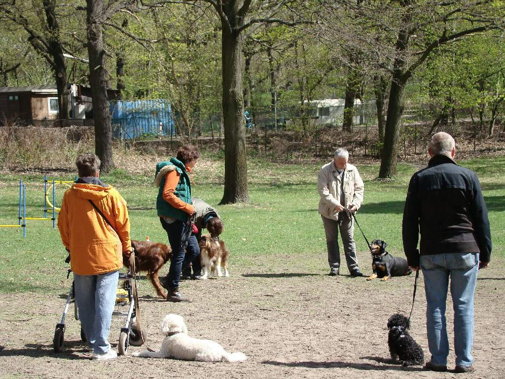 2013-04-28_hundetraining_27