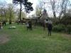 2013-04-28_hundetraining_01