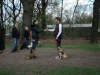 2013-04-28_hundetraining_17