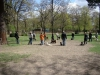 2013-04-28_hundetraining_25