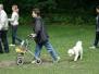 30.06.2013 Hundetraining