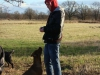 2012-12-30_hundetraining_041