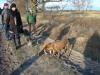2012-12-30_hundetraining_059