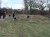 2012-12-30_hundetraining_094