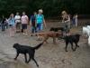 2012-07-01_hundetraining_28