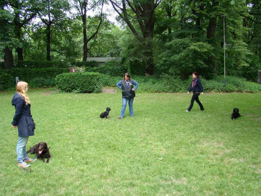 2012-06-03_hundetraining_067