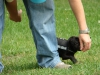2012-06-03_hundetraining_024