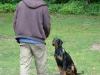 2012-06-03_hundetraining_038