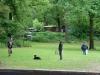 2012-06-03_hundetraining_042