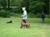 2012-06-03_hundetraining_055