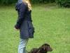 2012-06-03_hundetraining_068
