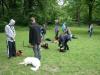 2012-06-03_hundetraining_107