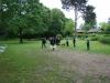 2012-06-03_hundetraining_124