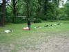 2012-06-03_hundetraining_138