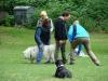 2012-06-03_hundetraining_152