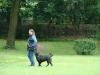 2012-06-03_hundetraining_173